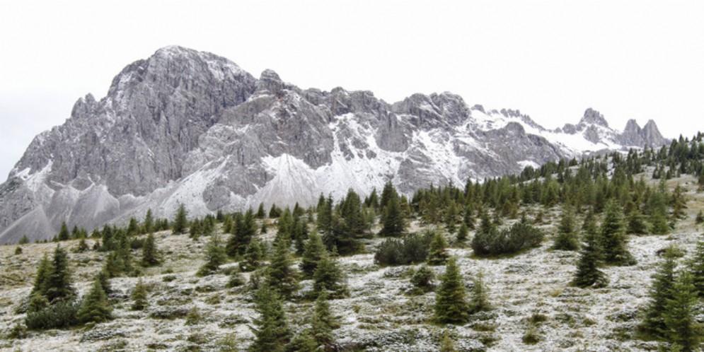 Zannier: «Vogliamo contrastare l'abbandono dei territori montani e scongiurare il dissesto idrogeologico»