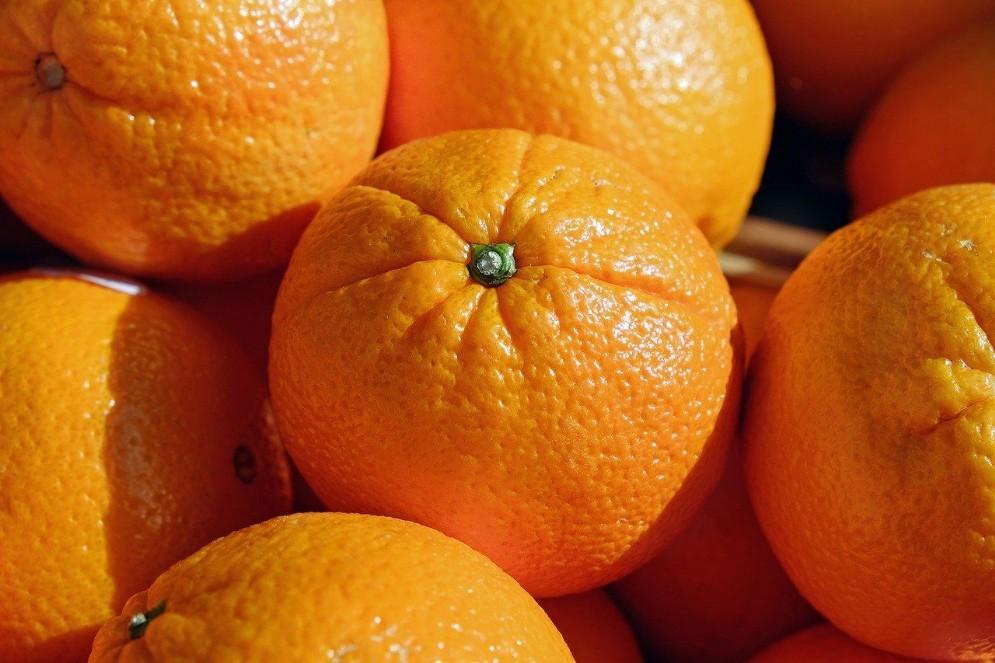 Alghero, citrus fruits to wish Happy Epiphany