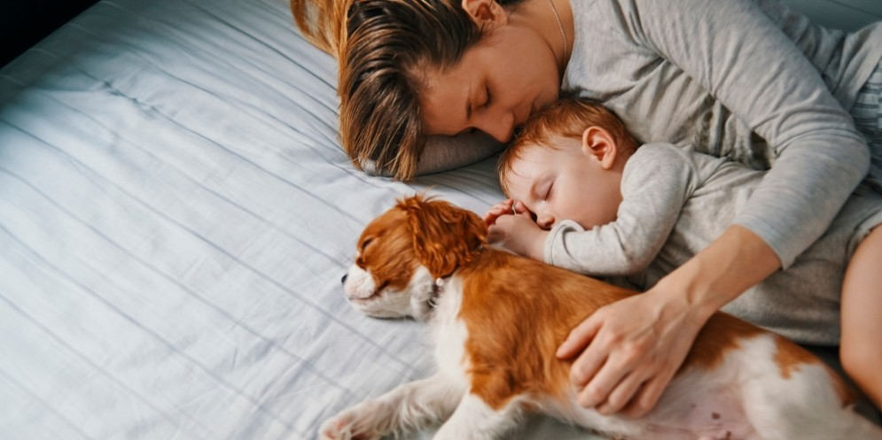 Mamma e figlio con un cucciolo di cane