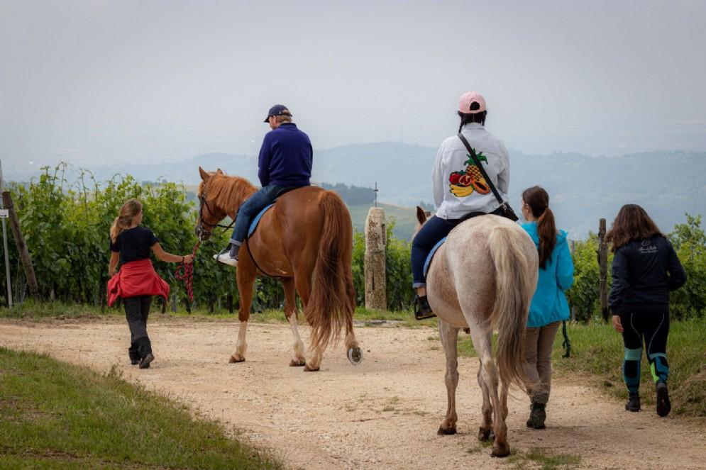 Ca' del Moro esperienza a cavallo