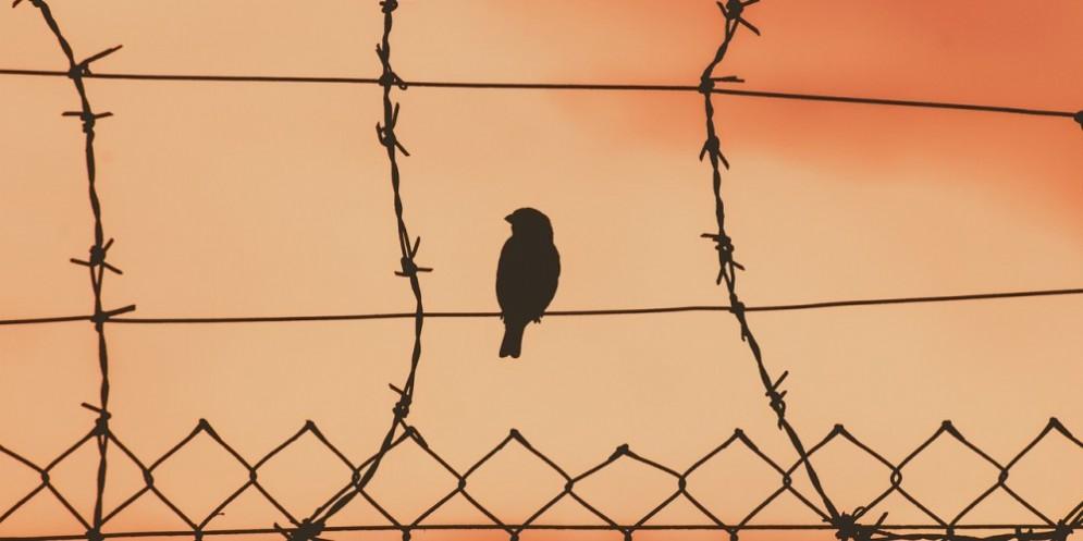 De Carlo: «Il lockdown provoca danni psicologici gravi. E la politica li sottovaluta»