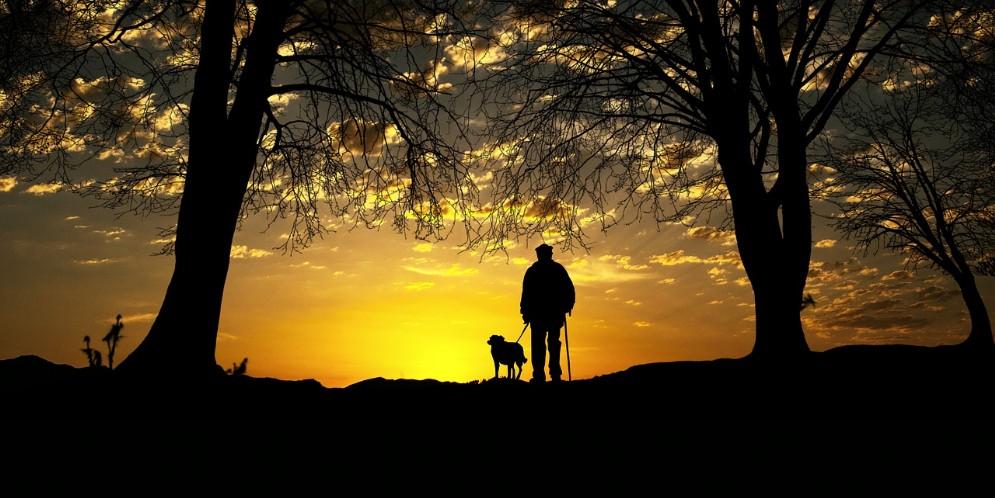 Avere un cane può ridurre l'isolamento da Alzheimer